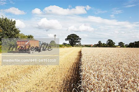 Tractor driving in harvested crop field Stock Photo - Premium Royalty-Free, Image code: 649-06353310