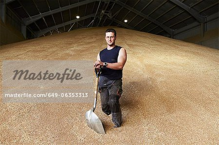 Farmer standing in shed of grain Stock Photo - Premium Royalty-Free, Image code: 649-06353313