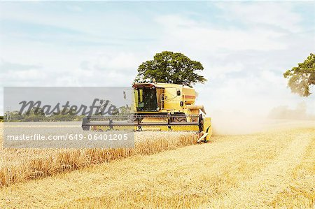 Tractor harvesting grains in crop field Stock Photo - Premium Royalty-Free, Image code: 649-06401205