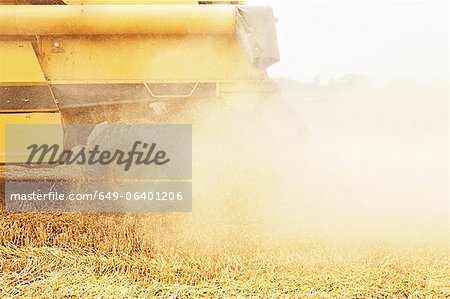 Tractor harvesting grains in crop field Stock Photo - Premium Royalty-Free, Image code: 649-06401206