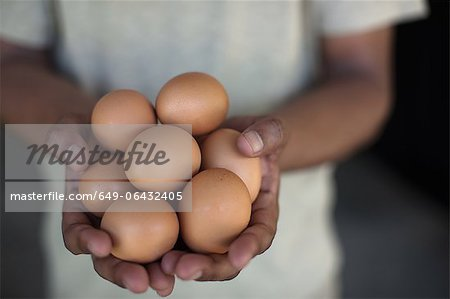 Close up of hands holding eggs Stock Photo - Premium Royalty-Free, Image code: 649-06432405
