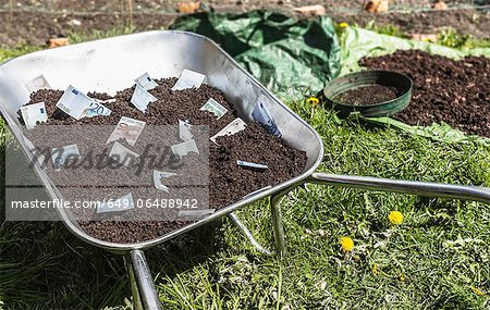 Euro notes in wheelbarrow of dirt Stock Photo - Premium Royalty-Free, Image code: 649-06488942