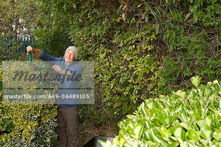 Older man trimming hedges in garden Stock Photo - Premium Royalty-Free, Image code: 649-06489105