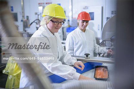 Workers packing fish in factory Stock Photo - Premium Royalty-Free, Image code: 649-06533448