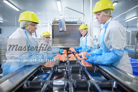 Workers packing fish in factory Stock Photo - Premium Royalty-Free, Image code: 649-06533449