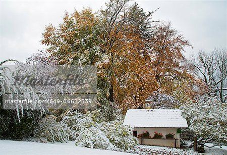 House and trees in snowy landscape Stock Photo - Premium Royalty-Free, Image code: 649-06622339