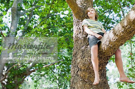 Smiling boy sitting in tree Stock Photo - Premium Royalty-Free, Image code: 649-06717299