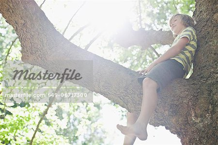 Smiling boy sitting in tree Stock Photo - Premium Royalty-Free, Image code: 649-06717300