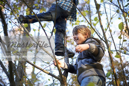 Boys up in tree Stock Photo - Premium Royalty-Free, Image code: 649-06812981