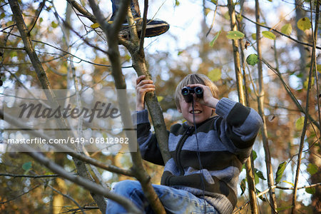 Boys up tree looking through binoculars Stock Photo - Premium Royalty-Free, Image code: 649-06812982