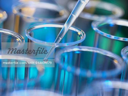 Analytical chemistry - sample being pipetted into test tube for analysis in laboratory Stock Photo - Premium Royalty-Free, Image code: 649-06844079