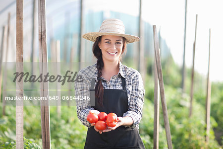 Woman holding tomatoes grown at farm Stock Photo - Premium Royalty-Free, Image code: 649-06844246