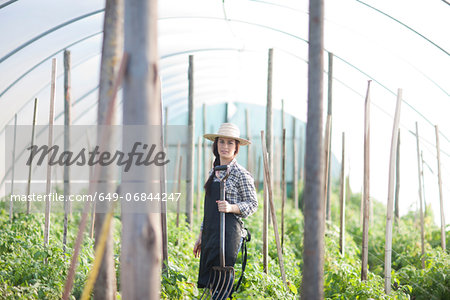 Young woman working in vegetable greenhouse Stock Photo - Premium Royalty-Free, Image code: 649-06844247