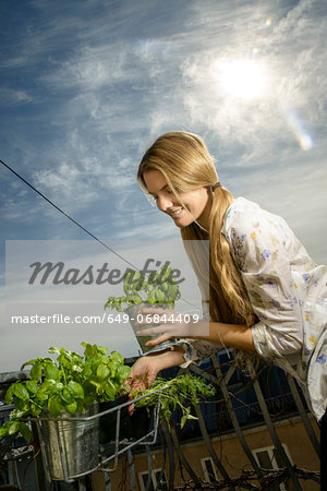 Young woman holding pot plant Stock Photo - Premium Royalty-Free, Image code: 649-06844409