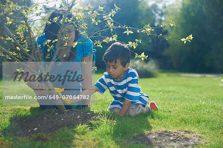 Mother and son planting tree in garden Stock Photo - Premium Royalty-Free, Image code: 649-07064782