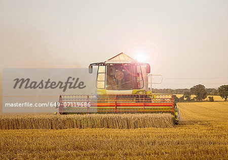 Combine harvester in field, Devon, England, UK Stock Photo - Premium Royalty-Free, Image code: 649-07119686