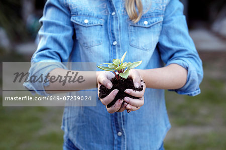 Close up of girl holding plant in pot soil Stock Photo - Premium Royalty-Free, Image code: 649-07239024