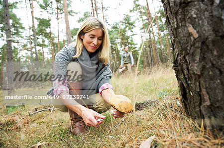 Mid adult woman foraging for mushrooms Stock Photo - Premium Royalty-Free, Image code: 649-07239741