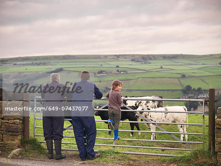 Mature farmer, adult son and grandson leaning on gate to cow field, rear view Stock Photo - Premium Royalty-Free, Image code: 649-07437077