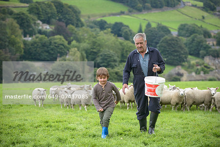 Mature farmer and grandson feeding sheep in field Stock Photo - Premium Royalty-Free, Image code: 649-07437085