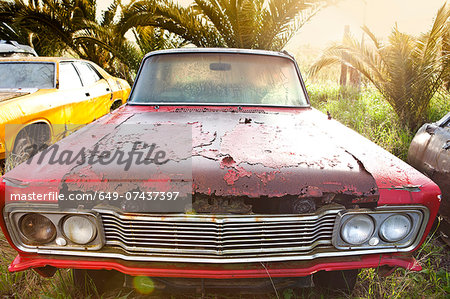 Front view of vintage car in scrap yard Stock Photo - Premium Royalty-Free, Image code: 649-07437397