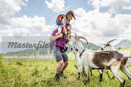 Man carrying daughter, looking at goats Stock Photo - Premium Royalty-Free, Image code: 649-07437538