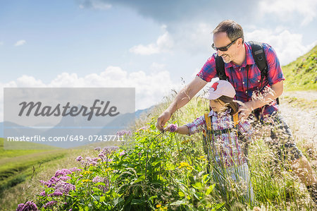 Father and daughter looking at plants, Tyrol, Austria Stock Photo - Premium Royalty-Free, Image code: 649-07437711