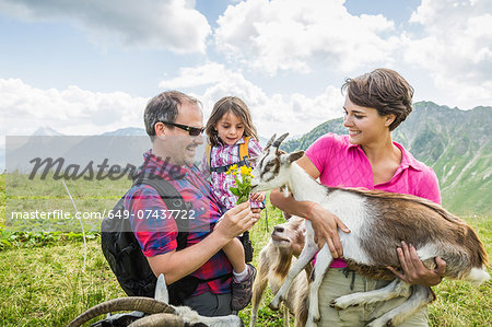 Parents and daughter feeding goats, Tyrol, Austria Stock Photo - Premium Royalty-Free, Image code: 649-07437722