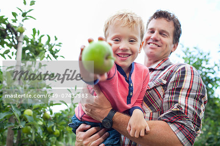 Farmer and son picking apples from tree in orchard Stock Photo - Premium Royalty-Free, Image code: 649-07437983