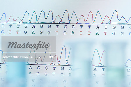 DNA sequencing. Computer monitor displaying results of automated DNA sequencing with defocused microcentrifuge tubes in the front Stock Photo - Premium Royalty-Free, Image code: 649-07596089