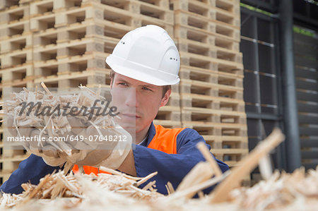 Young man with handful of wood shaving in timber yard Stock Photo - Premium Royalty-Free, Image code: 649-07648212
