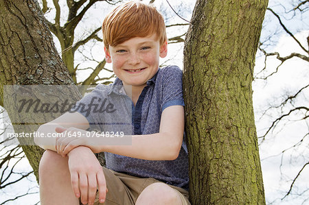 Portrait of boy sitting in tree Stock Photo - Premium Royalty-Free, Image code: 649-07648249