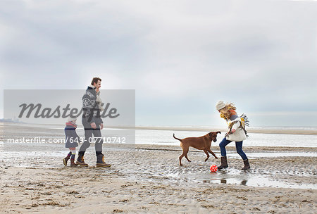 Mid adult parents with daughter and dog playing football on beach, Bloemendaal aan Zee, Netherlands Stock Photo - Premium Royalty-Free, Image code: 649-07710742