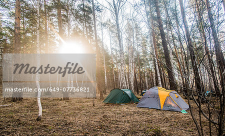 Two pitched tents in forest clearing Stock Photo - Premium Royalty-Free, Image code: 649-07736821