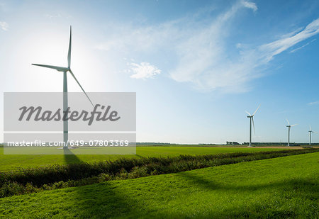 Row of wind turbines in front of sunrise in field landscape, Rilland, Zeeland, the Netherlands Stock Photo - Premium Royalty-Free, Image code: 649-07803369