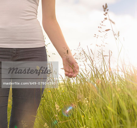 Young woman running hand through long grass in meadow under bright sunshine, close up Stock Photo - Premium Royalty-Free, Image code: 649-07804390