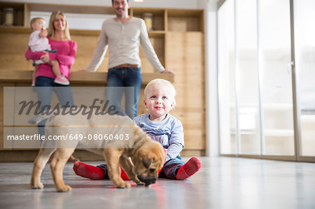 Family watching male toddler with puppy on dining room floor Stock Photo - Premium Royalty-Free, Image code: 649-08060403