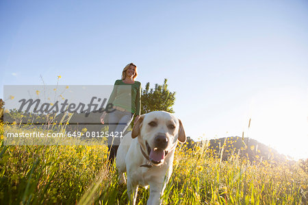 Mature woman walking labrador retriever in sunlit wildflower meadow Stock Photo - Premium Royalty-Free, Image code: 649-08125421