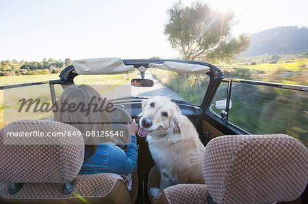 Mature woman and dog, in convertible car, rear view Stock Photo - Premium Royalty-Free, Image code: 649-08125540