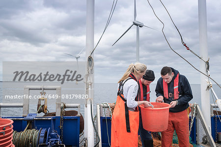 Research scientists and fisherman inspecting catch of fish on deck of research ship Stock Photo - Premium Royalty-Free, Image code: 649-08179820