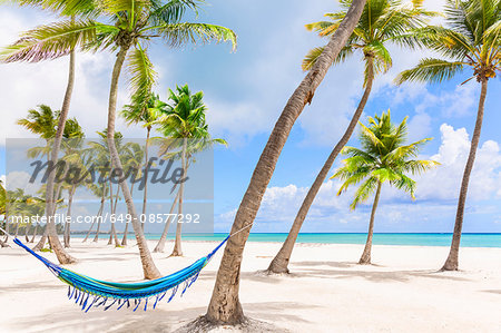 Hammock between palm tree's on beach, Dominican Republic, The Caribbean Stock Photo - Premium Royalty-Free, Image code: 649-08577292