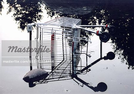 Shopping cart in pool of water Stock Photo - Premium Royalty-Free, Image code: 653-01654454