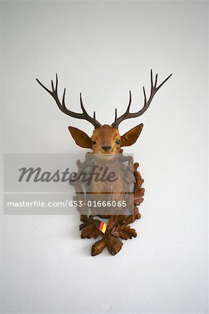A plastic deer head on a wall Stock Photo - Premium Royalty-Free, Image code: 653-01666065