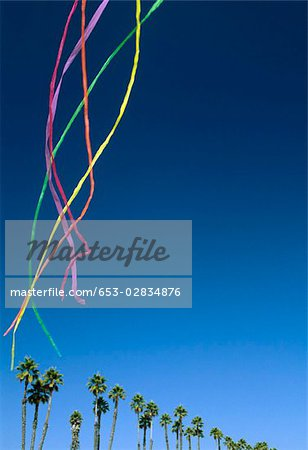 Colored streamers floating in the sky above palm trees Stock Photo - Premium Royalty-Free, Image code: 653-02834876
