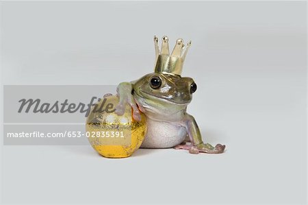 The frog prince and gold ball, studio shot Stock Photo - Premium Royalty-Free, Image code: 653-02835391