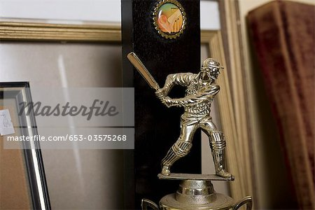 Detail of a cricket trophy Stock Photo - Premium Royalty-Free, Image code: 653-03575268