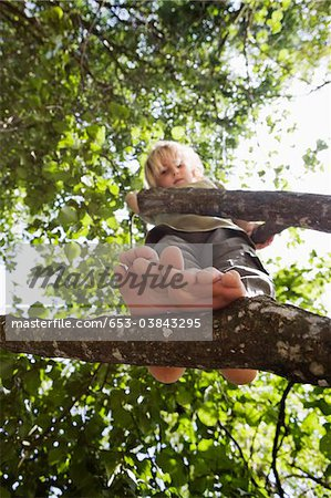View from below of a child standing in a tree Stock Photo - Premium Royalty-Free, Image code: 653-03843295