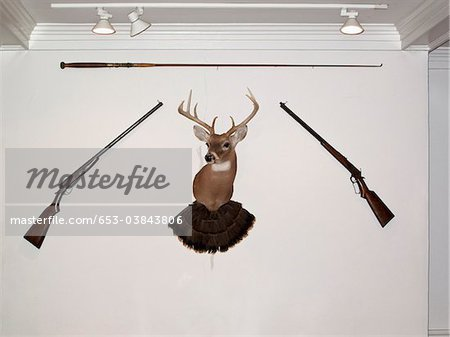 A hunting trophy in the middle of two old-fashioned rifles and a fishing rod Stock Photo - Premium Royalty-Free, Image code: 653-03843806