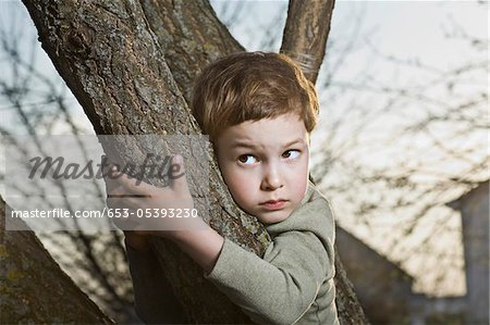 A young scared looking boy holding on to a tree branch Stock Photo - Premium Royalty-Free, Image code: 653-05393230