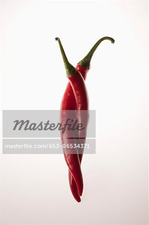 Two red chili peppers intertwined Stock Photo - Premium Royalty-Free, Image code: 653-06534371